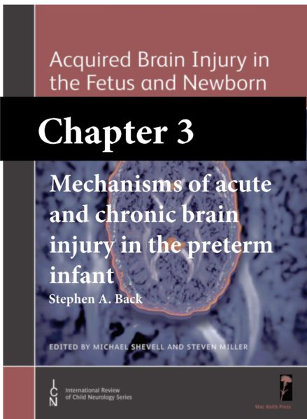 Acquired Brain Injury in the Fetus and Newborn, Shevell, Chapter 3 cover